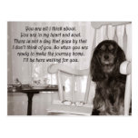 Missing You: A Cavalier KIng Charles Spaniel Card Postcard