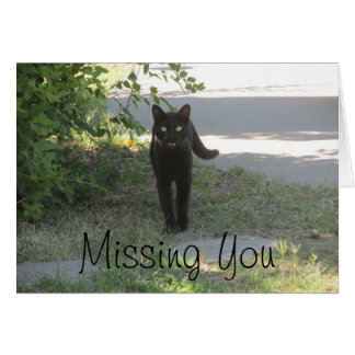 Missing You Black Cat in a Garden Card