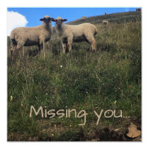Missing you _ Blank Inside Card