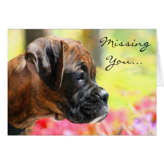 Missing You Brindle Boxer puppy greeting card