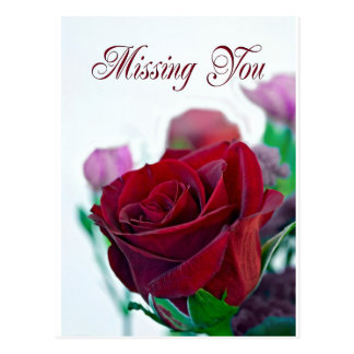 Missing you card with a classic red rose