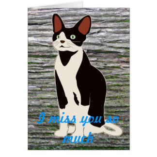 Missing You (Cat) Cards