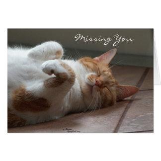 Missing you Cute cat sleeping Card