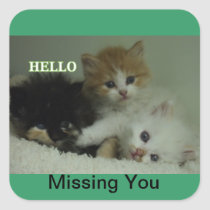 Missing You kittens stickers