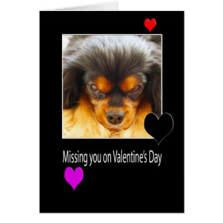 Missing you on Valentine's Day With Dog Card
