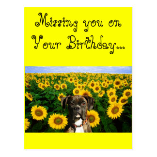 Missing you on your Birthday boxer postcard