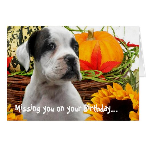 Missing you on your Birthday boxer puppy card