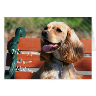 Missing you on your Birthday Cocker Spaniel card