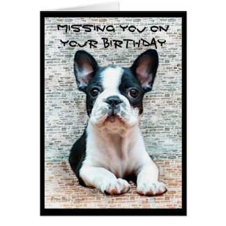 Missing you on your Birthday French Bulldog card