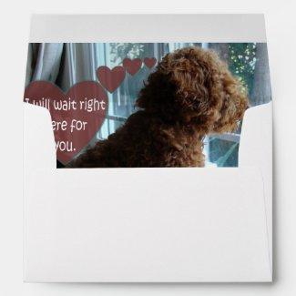 Missing You - Poodle - Envelope