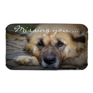 Missing You - Sad Dog iPhone 3 Cover