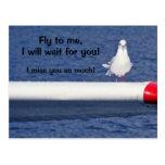 Missing You - Seagull Postcard Postal
