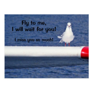 Missing You - Seagull Postcard Postal