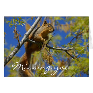 Missing you Squirrel greeting card