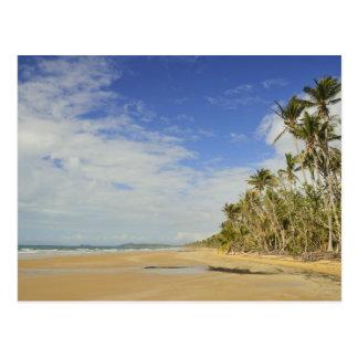 Mission Beach 2 Postcard