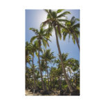 Mission Beach Gallery Wrap Canvas