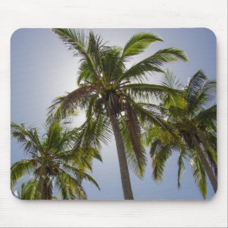 Mission Beach Mouse Pad