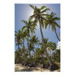 Mission Beach Photo Print