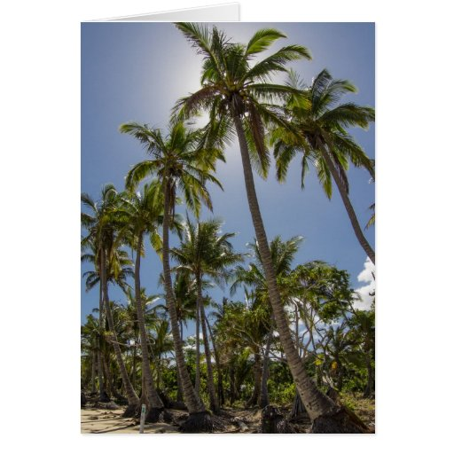 Mission Beach Stationery Note Card