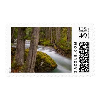 Mission Creek in spring Stamp