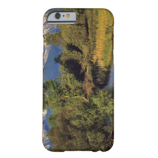 Mission Creek in the National Bison Range in Barely There iPhone 6 Case
