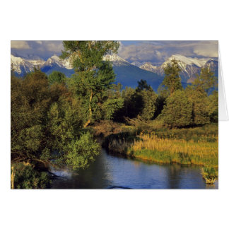 Mission Creek in the National Bison Range in Greeting Card