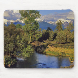 Mission Creek in the National Bison Range in Mouse Pad