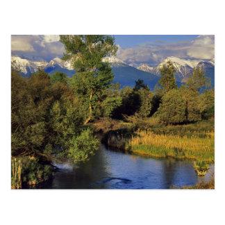 Mission Creek in the National Bison Range in Postcard