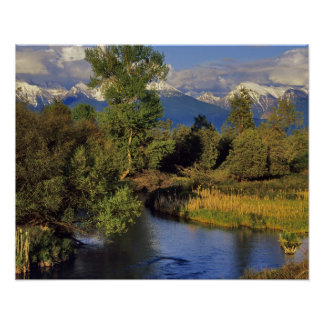 Mission Creek in the National Bison Range in Poster