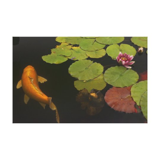 Mission Koi and Flower Canvas Print