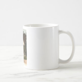 Mission Tower Stockbridge Mass. 1906 Vintage Coffee Mug