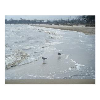 Mississippi Beach Postcard #2