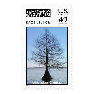 Mississippi Cypress Sello