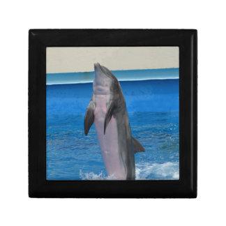Mississippi Dolphin Jewelry Box