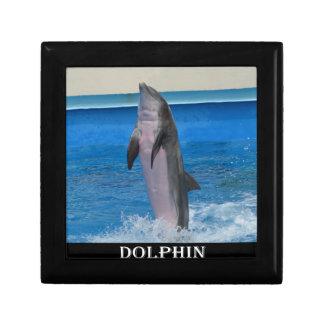 Mississippi Dolphin Keepsake Box
