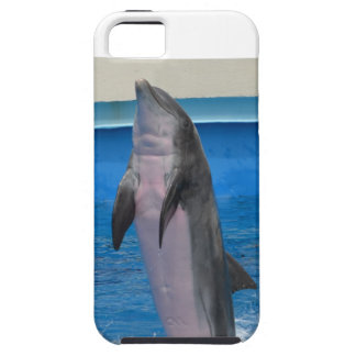 Mississippi Dolphin iPhone SE/5/5s Case