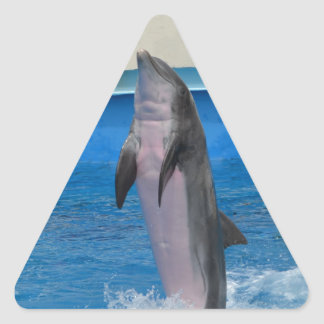 Mississippi Dolphin Triangle Sticker