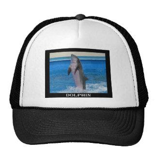 Mississippi Dolphin Trucker Hat
