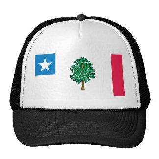 Mississippi Flag T-Shirts (1861) Trucker Hats