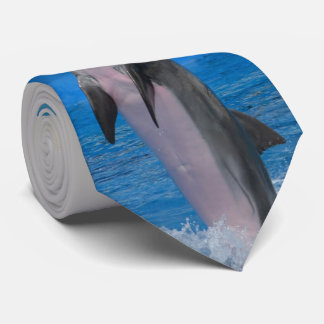 Mississippi, Florida Dolphin Neck Tie