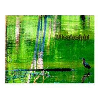 Mississippi Lake Postcard