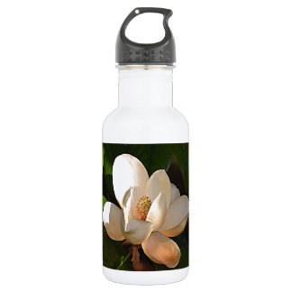 Mississippi Magnolia Stainless Steel Water Bottle
