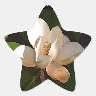 Mississippi Magnolia Star Sticker