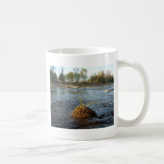 Mississippi river Grass on a Rock Coffee Mugs