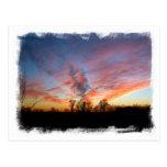 Mississippi Sunset Card Postcard