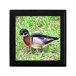 Mississippi Wood Duck Jewelry Boxes