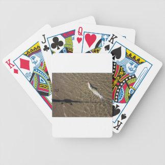 Missouri Catfish Bicycle Playing Cards