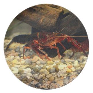Missouri Crawfish Dinner Plates