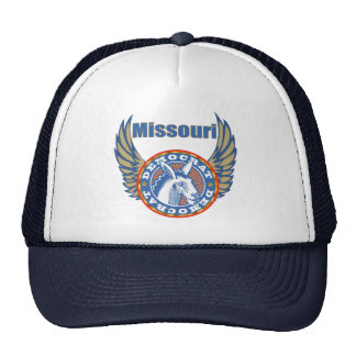 Missouri Democrat Party Hat