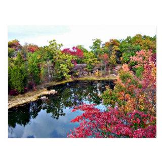 Missouri Fall Photograph Postcard